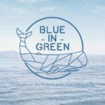 Blue In Green Logo
