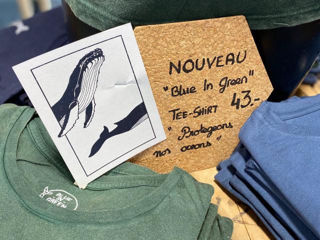 Blue In Green Chez Plongee.ch